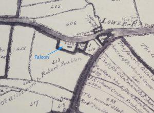1806-falcon-detail-2